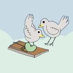 Prendere due piccioni con una fava