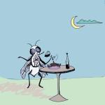 Essere una mosca bianca