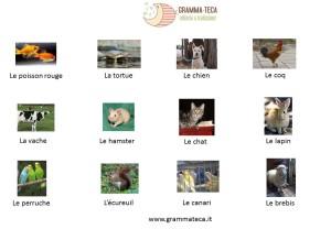 les animaux_presentazione lessico_grammateca